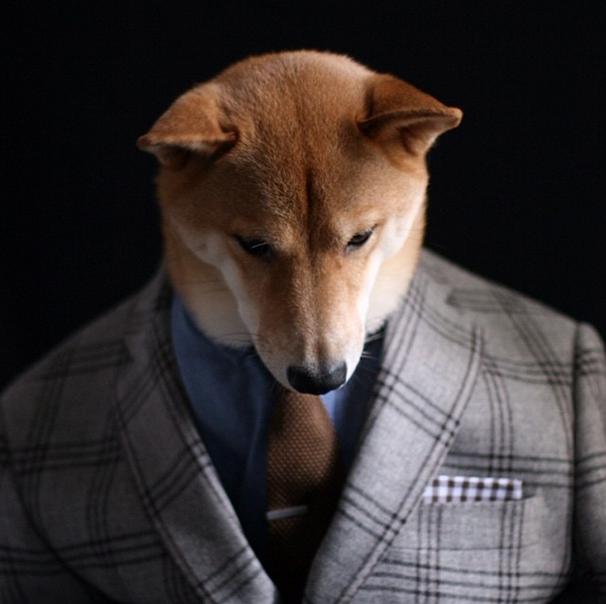 mensweardog instagram